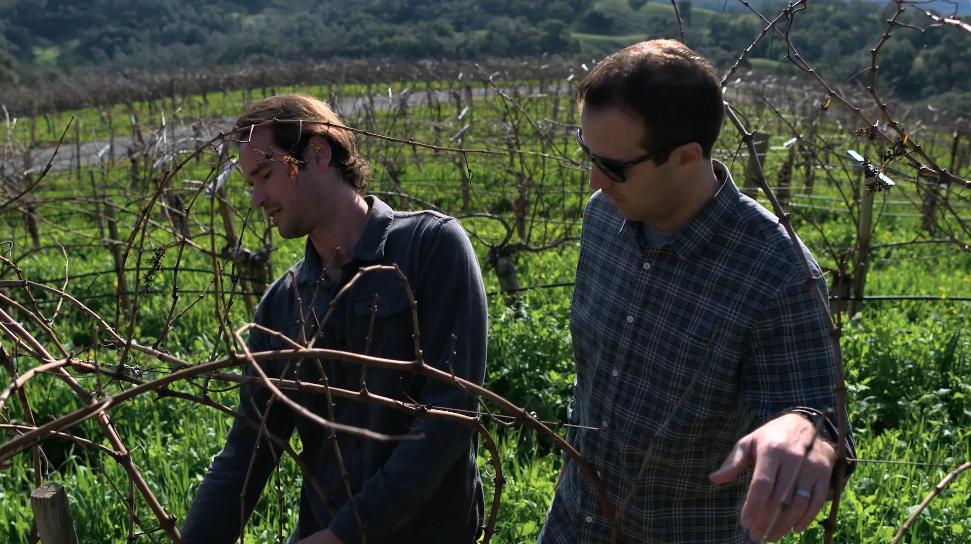 Amizetta Estate Winery napa valley