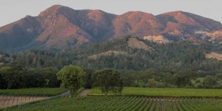 Knights Valley wine region the best kept secret