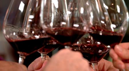 Silver Oak Wine Tasing Tour Napa Valley
