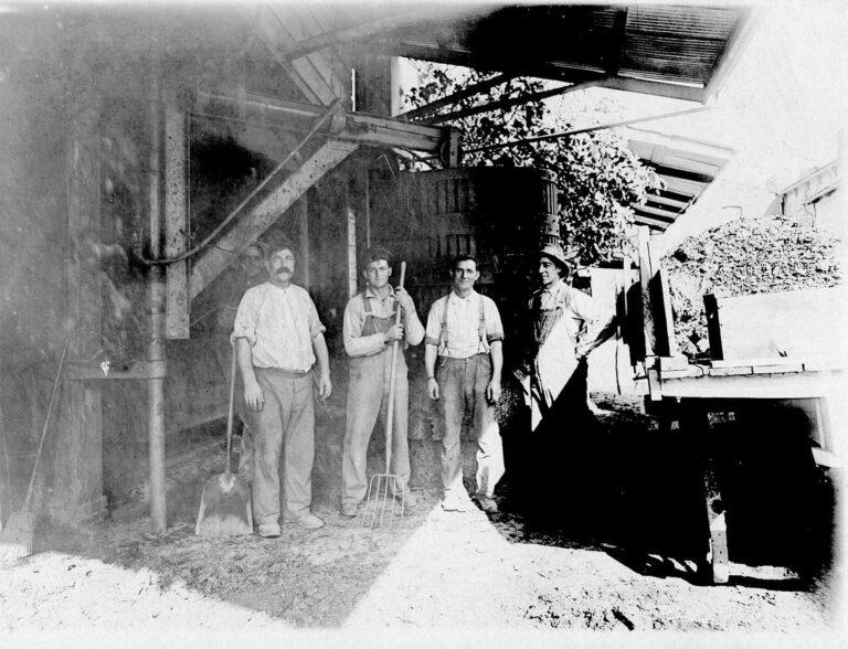 Migliavacca Wine Company Napa Valley history