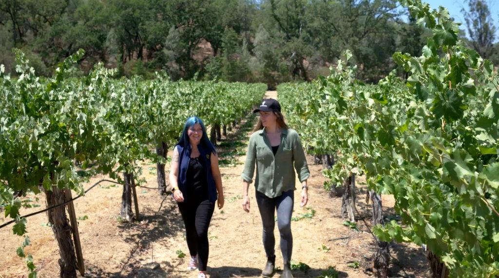 Gaderian Wines Napa Valley